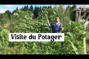 visite du jardin potager