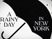 A Rainy Day In New York - Wood Allen