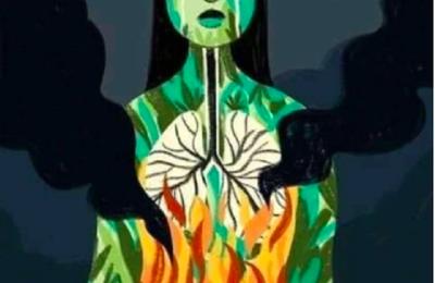 Amazonie: ce n'est pas le feu, c'est le capitalisme!