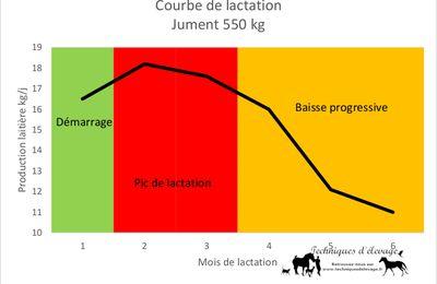 Alimentation inadaptée de la poulinière suitée: 1. Courbe de lactation et besoins