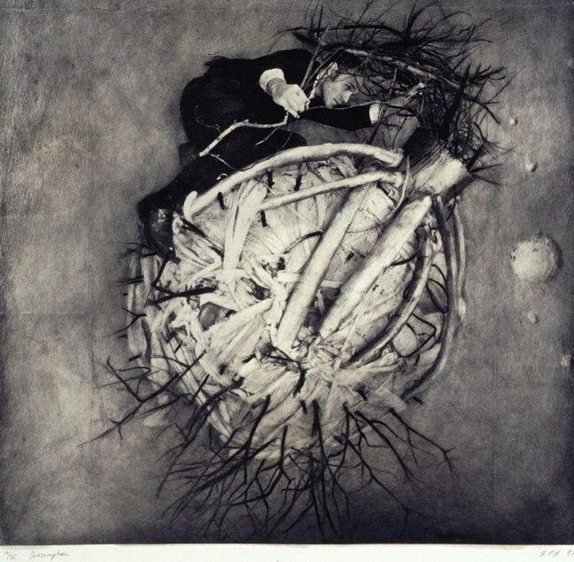 Robert ParkeHarrison emploie le négatif de papier et le collage pour construire des récits de guérison et de restauration parmi des paysages dévastés par la technologie et la surexploitation.