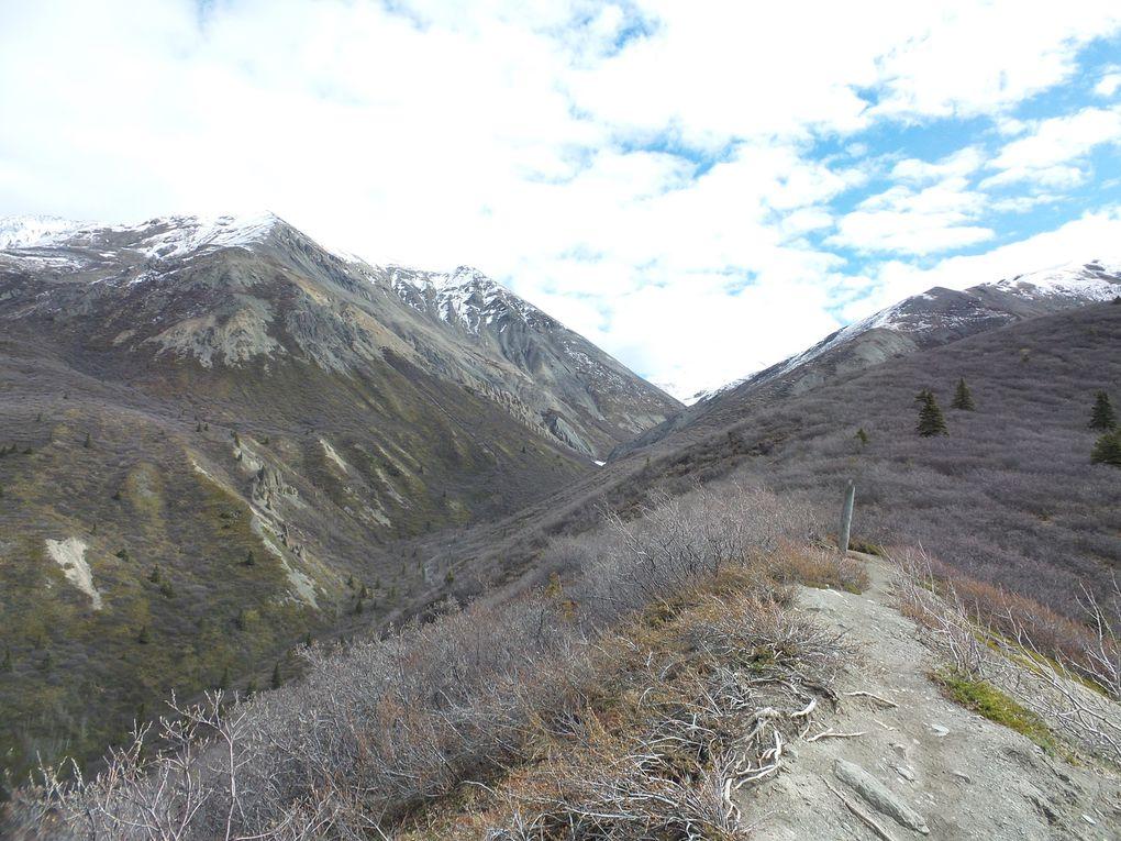 Le sentier du ruisseau Sheep