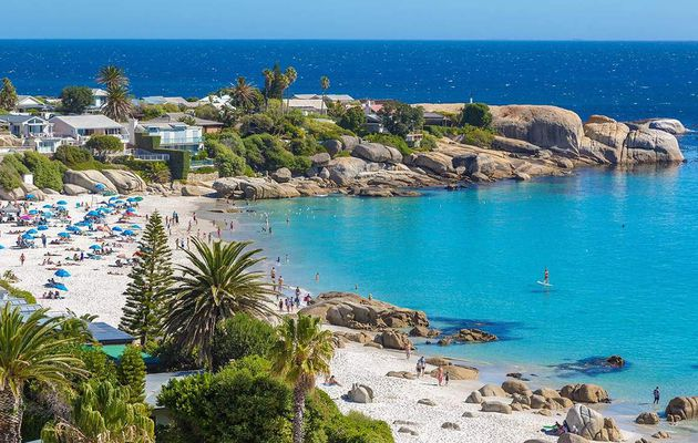 Head to Cape Town and drive South Africa's Garden Route