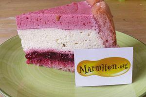 Gâteaux-mousse mascarpone, framboises et biscuits rose de Reims (marmiton.org)