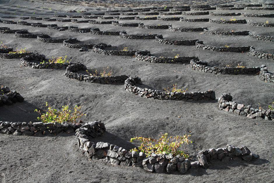 """Lanzarote, """"la perle noire"""". Volcanisme, aridité, soleil, plages et petites villes aux murs blancs."""