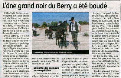 """Ils sont bien beaux ces ânes """"Grands Noirs du Berry"""""""