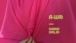 A-WA, la world orientiale se teinte d'électro avec Habib Galbi