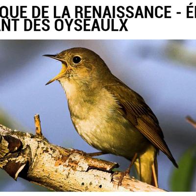La musique de la Renaissance expliquée/2