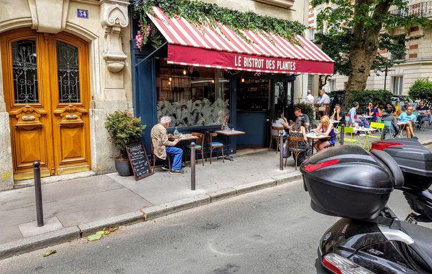 Le Bistrot des plantes (Paris 14) : jeune pousse au soleil