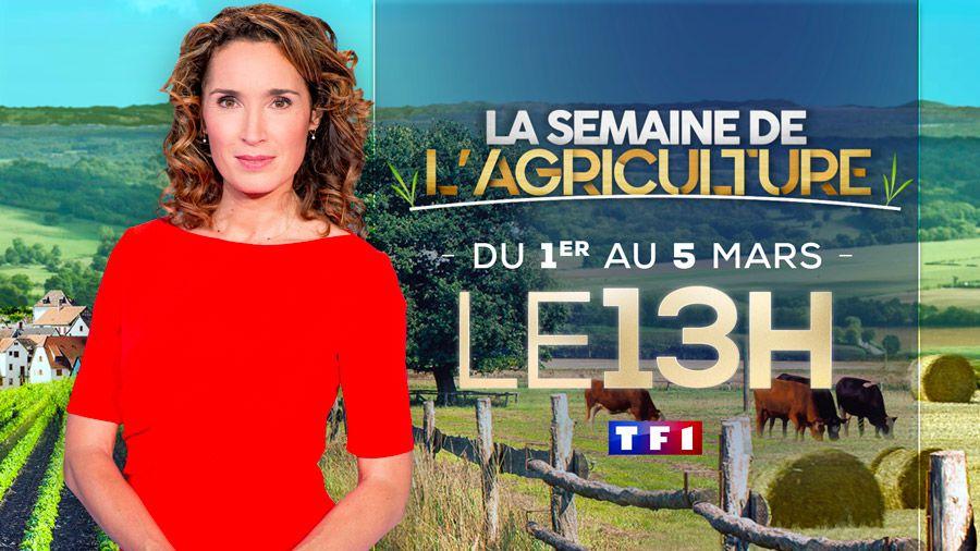 Page spéciale agriculture dès ce lundi dans le JT de 13H sur TF1