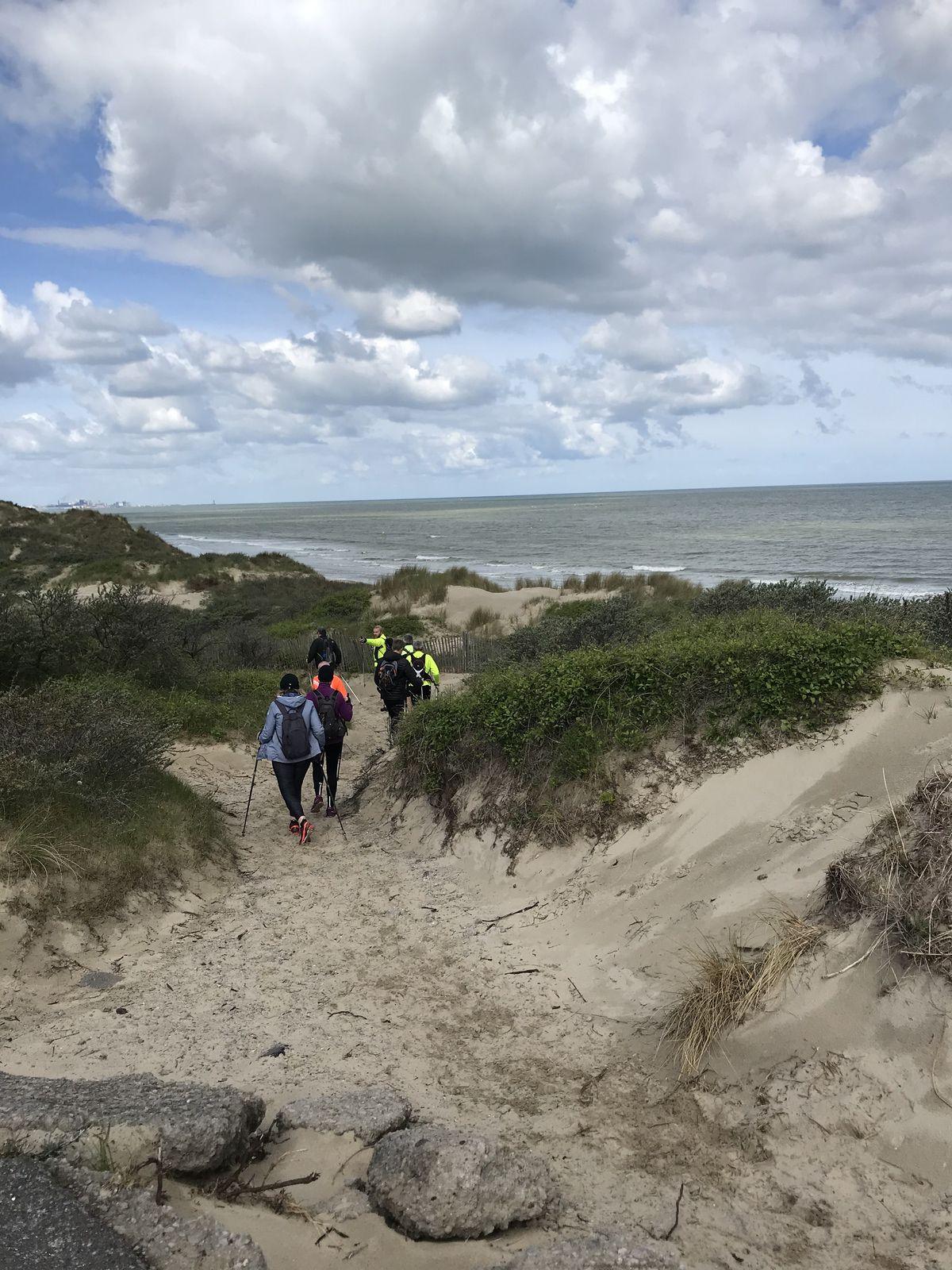 Sortie plage/dune le dimanche 23 mai