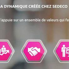 Valeurs entrepreneuriales : SEDECO booste ses collaborateurs !