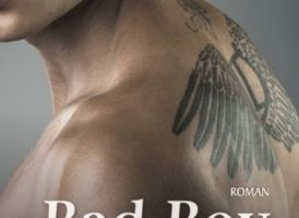Clipped Wings tome 1 : Bad Boy de Helena HUNTING