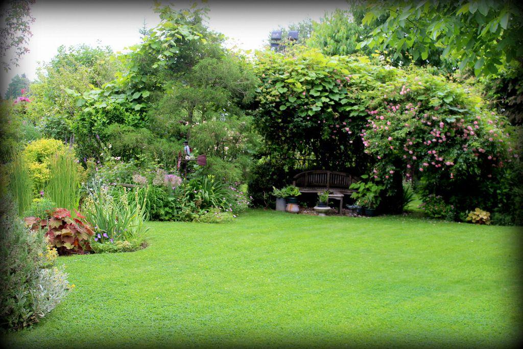 Quelques vues du jardin,
