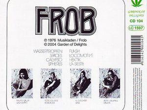 frob, un groupe alternatif allemand des années 1970 auteur d'un unique album et avec le guitariste français Philippe caillat arrivé en 1975