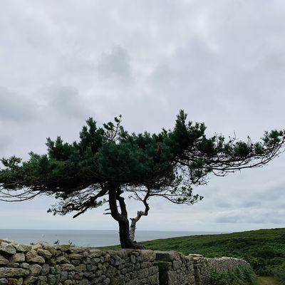 Balade dans le Sud Finistère