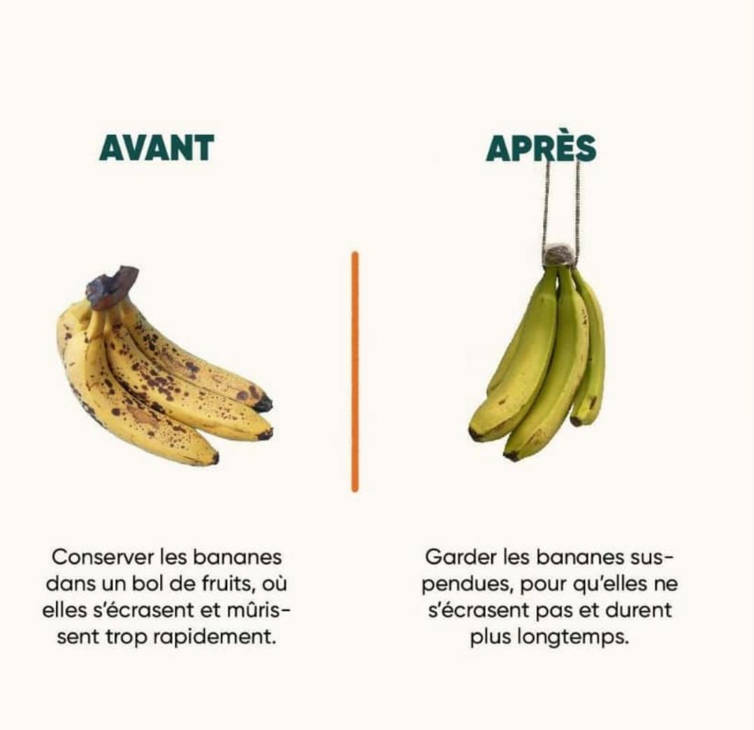 Conserver les bananes en les suspendant