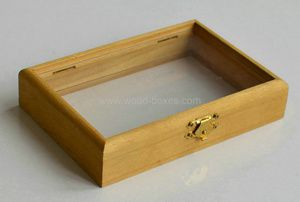 Wooden Box with Glass Top and Bottom