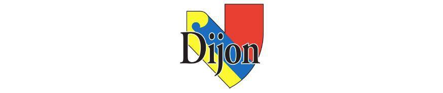 2021-05-09 - Dimanche 9 mai 2021 - Les Foulées Rotariennes - Dijon