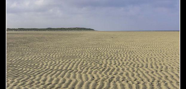 Plage, dunes et coquillages ...