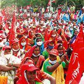 Les communistes indiens soutiennent la lutte des agriculteurs et demandent l'abrogation des lois agricoles - Analyse communiste internationale