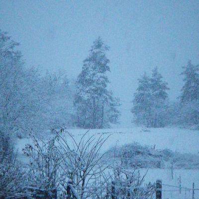 La neige en début d'année le 22 janvier 2015 (22-28cm)