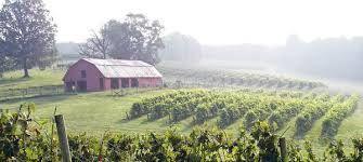 Viticulture in Georgia