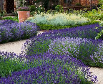 The walled garden at