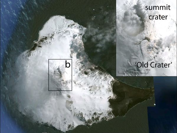 Location of Sanders island in the South Sandwich - Volcano position and the summit crater - Doc. GVP - a clic to enlarge