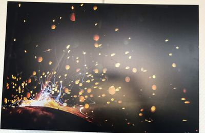Photographies de Jean Pierre Dauzet - Du 11.01 au 20.02.2021 - Salle du Conseil Municipal