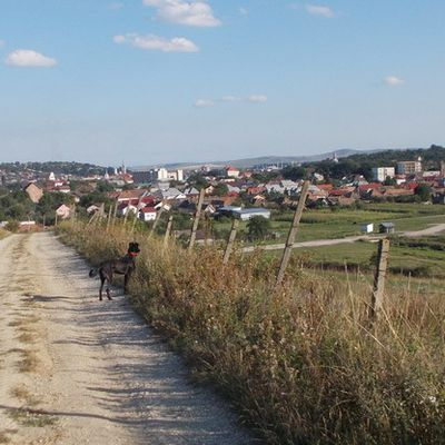 Imagini din Turda (10)
