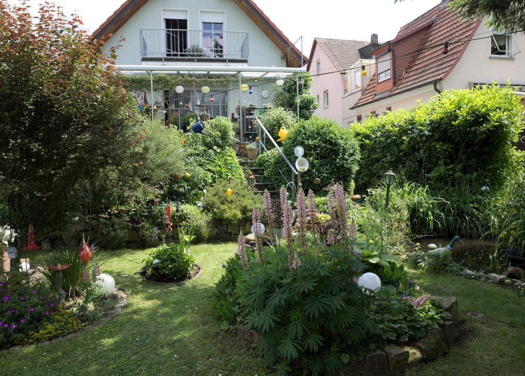 Tag der Offenen Gärten in Veitshöchheim war ein Riesenerfolg - letzter Teil  - In der Maingasse ansässiges WürzburgRadio schaute über den Gartenzaun