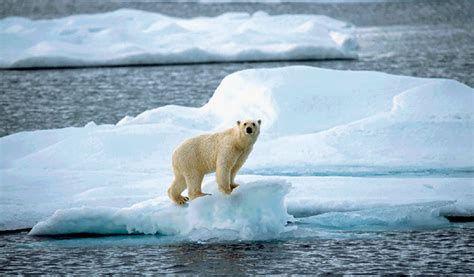 Le climat ? On n'y peut rien pour trois raisons différentes et chacune est suffisante