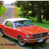 CARTE POSTALE FORD MUSTANG 1965 - car-collector.net