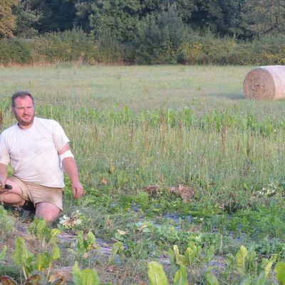 Les bios légumes du Boischaut sud