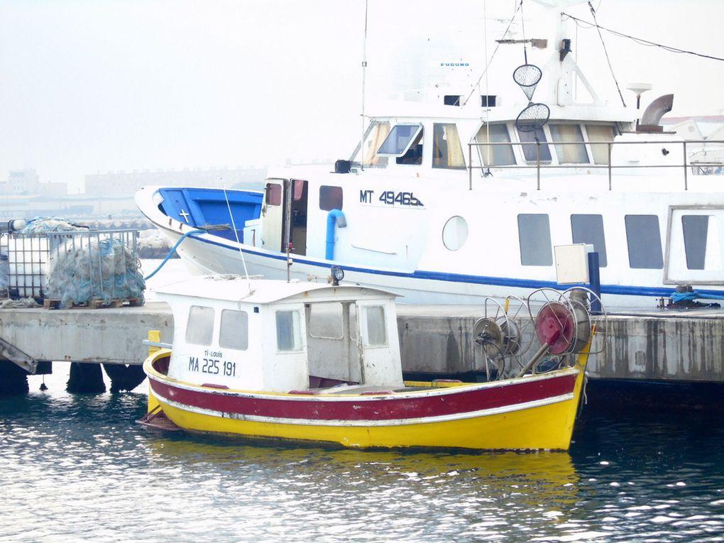 TI-LOUIS , MA 225191 ,  a quai dans l'anse Aubran à Port de Bouc le 13 mars 2017