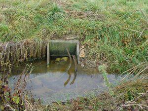 Diagnostic des risques de ruissellements pour comprendre les chemins de l'eau