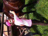 Stage équitation Comines (21-25/07/2014)