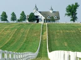 Viticulture in Kentucky