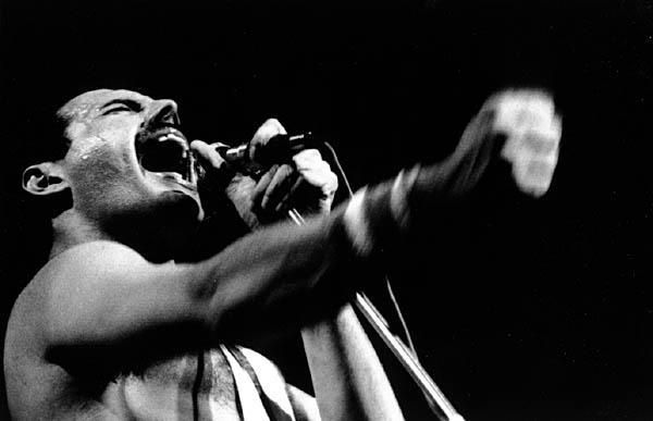 10 Things You Never Knew About Freddie Mercury