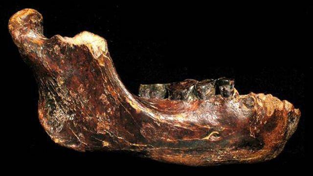 Une nouvelle espèce humaine pourrait avoir été découverte à Taïwan
