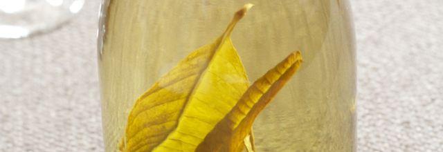Digestif verveine-citronnelle