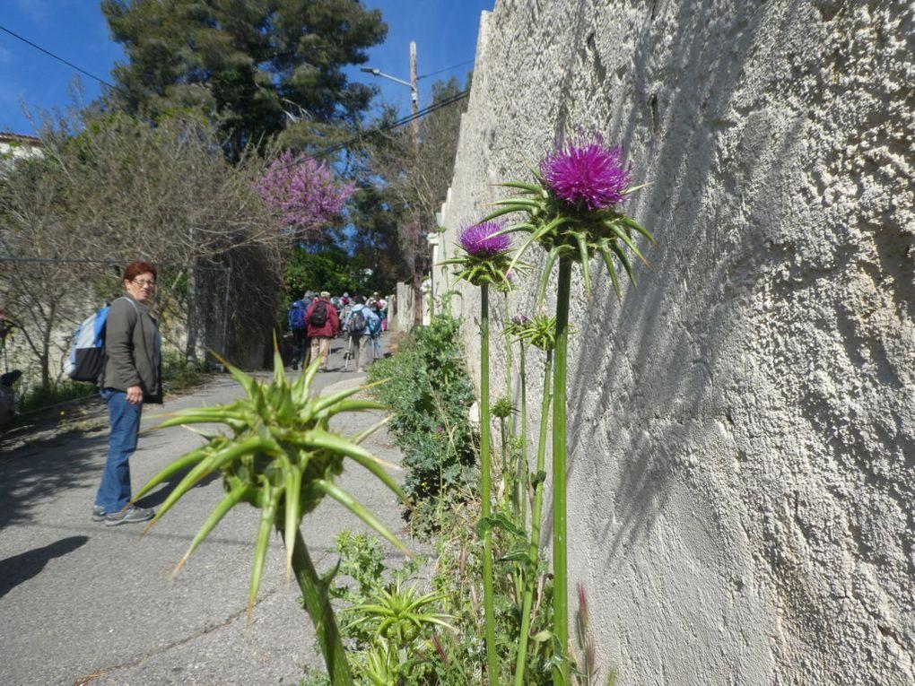 Rando du 08/04/2019-Istres entre ville et nature