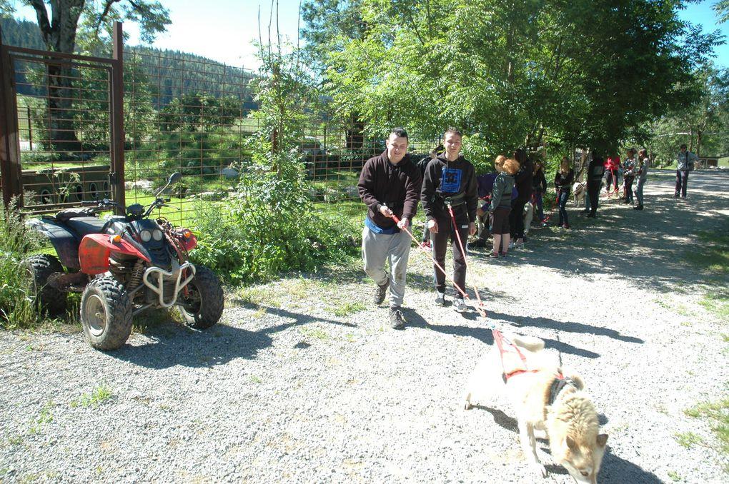 Sortie cani-rando pour les groupes 3 et 5 le mercredi matin