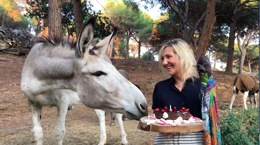Sylvie Bourgeois Harel fête l'anniversaire de Marcelline l'aubergine avec les ânes de la ferme des Bouis à Ramatuelle