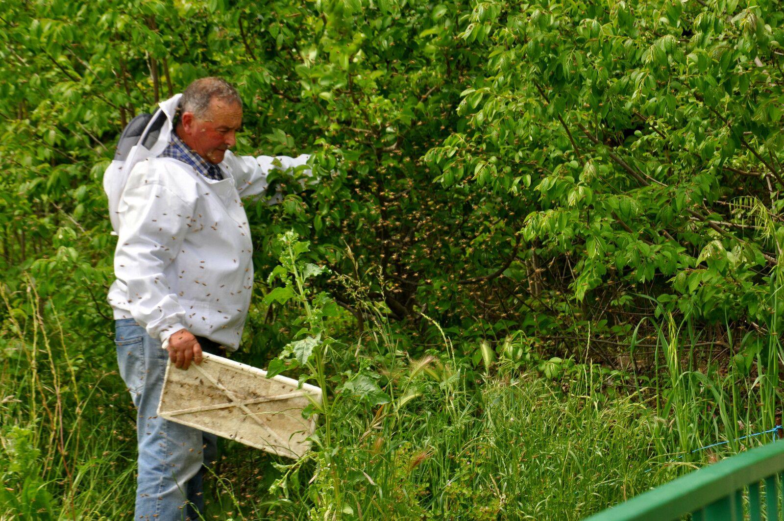André Huguet avec les abeilles.