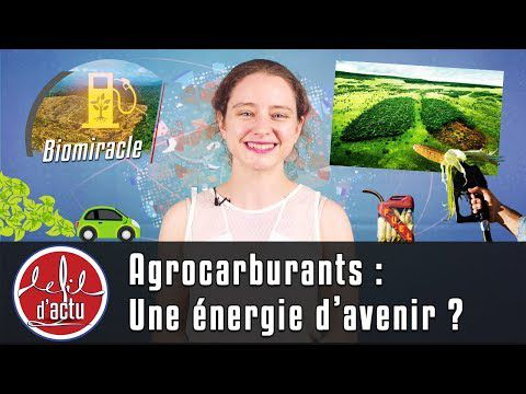 AGROCARBURANTS : UNE FAUSSE ROUTE !