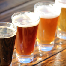 Une approche CRISPR pour une bière « plus verte »