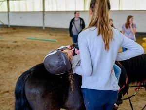 Stage Initiation à l'Equitation Comines (01-05 Août)