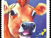 """Les vaches """"timbrées"""""""